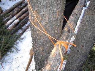 Nylon Rope for Tying Logs